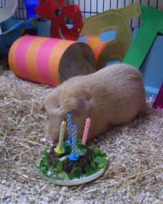 My 4th birthday cake