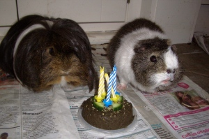 Victor and Dougall share 5th birthday cake