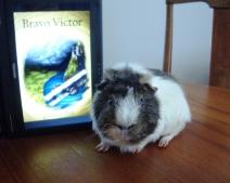 Bravo, Victor