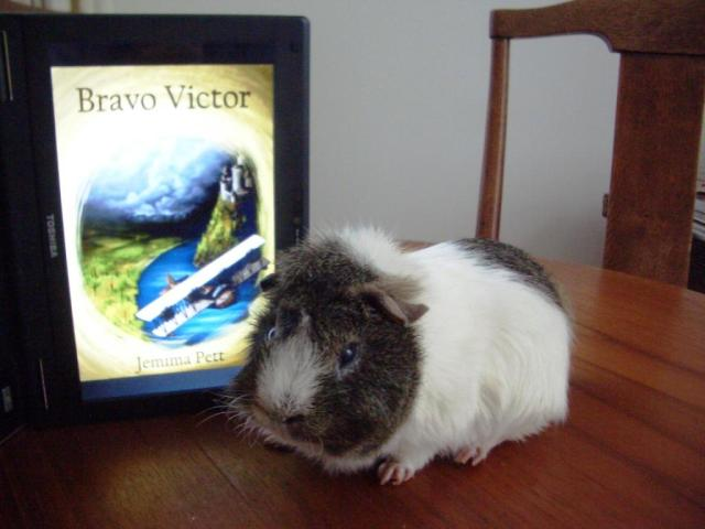 BV Victor 2