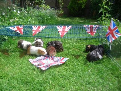 Jubilee Garden Party