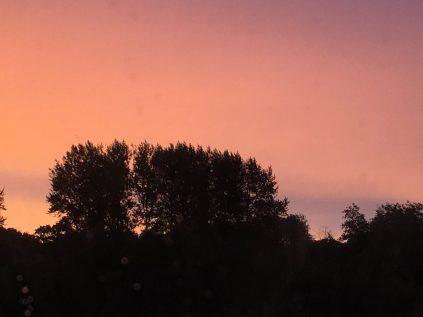 sunrise outside our window