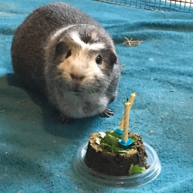 Bertie poses with his cake
