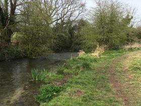 River Meon