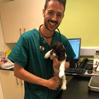 Dr David with a cat or a puppy