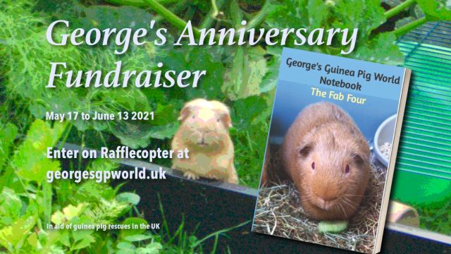 George's anniversary banner